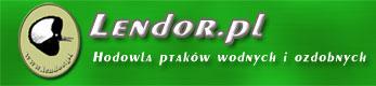 Lendor.pl - Hodowla ptaków wodnych i ozdobnych